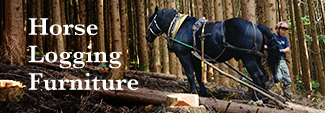 Horse Logging Furniture