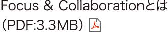 Focus & Collaborationとは(PDF:3.3MB)